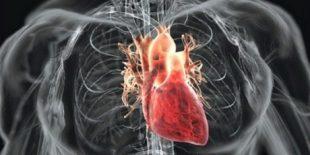 При сердечно-сосудистых заболеваниях
