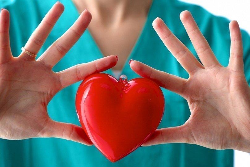 здоровое сердце